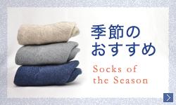 季節のおすすめ靴下